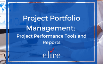 Project Portfolio Management: Project Performance Tools and Reports