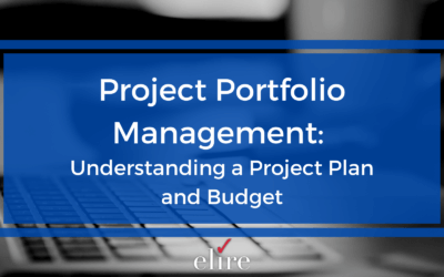 Project Portfolio Management: Understanding a Project Plan and Budget
