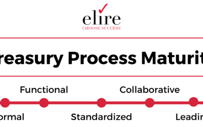 Treasury Process Maturity